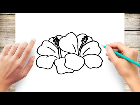 How To Draw A Hawaiian Flower Step By Step For Kids