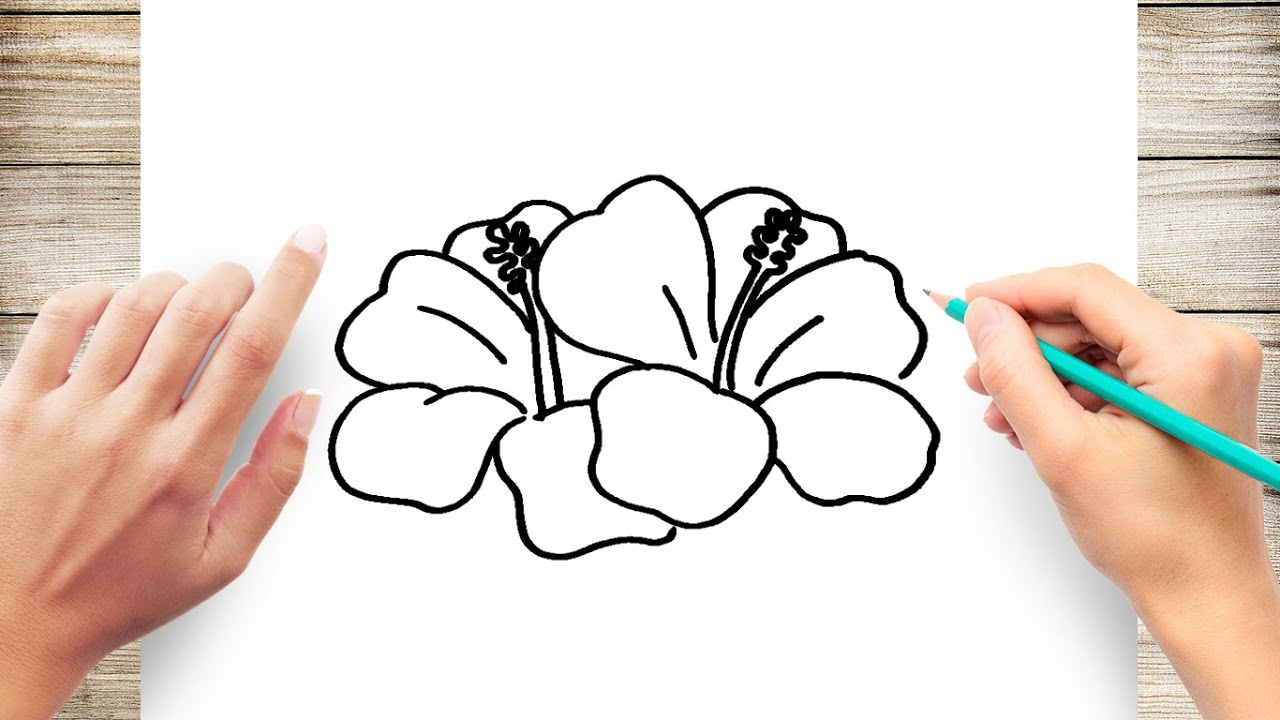 How To Draw A Hawaiian Flower Step By Step For Kids Youtube
