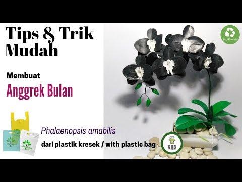 Bunga kresek Anggrek Bulan |DIY how to make Phalaenopsis Orchid from plastic bag |Phalaenopsis