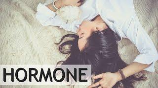 Die verrückte Welt der HORMONE ♥