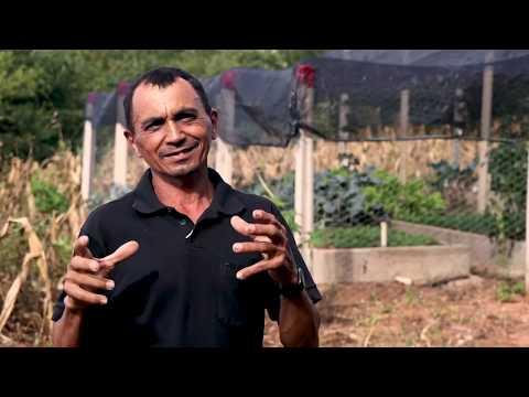 Projeto Horta Orgânica com Economia de Água