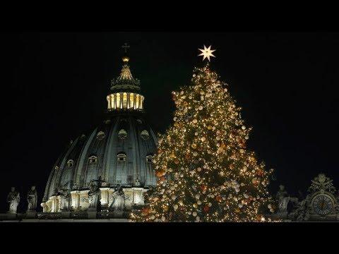 Vatican's 2017 Christmas tree and Nativity Scene