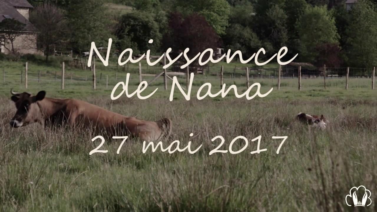Notre ferme pédagogique - Naissance de Nana