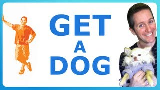 PARENTS & PUPPIES - HOW TO CONVINCE YOUR PARENTS TO GET YOU A DOG! - Hey Brett!