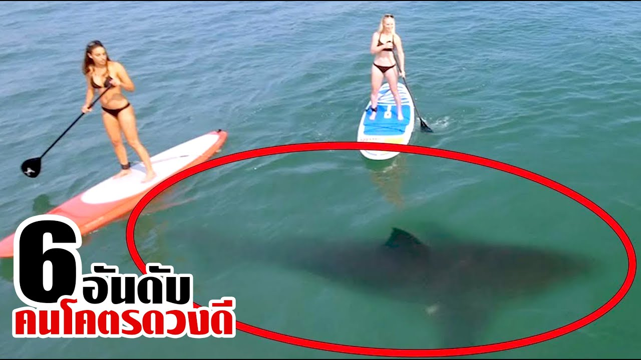 6 คนที่โคตรจะโชคดี ที่รอดจากสัตว์ดุร้ายใต้ทะเลได้!! (ตอนที่2)