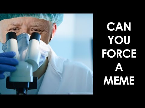 Can You Force a Meme | In The Field