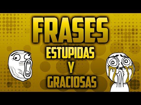 Top 5 Frases Más Estupidas Y Graciosas Que Dicen Los