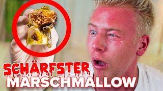 SCHÄRFSTER MARSHMALLOW DER WELT ! 😱 Live Reaktion GEFÄHRLICH ☠️ II RayFox