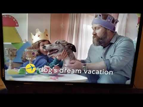 New Expedia Ad With Whippet