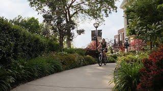 Welcome To Harding University