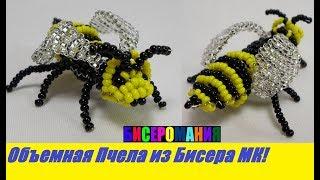 Объемная Пчелка Мая из Бисера Мастер Класс! Животные из Бисера / Tutorial: Bee of Bead Master Class!