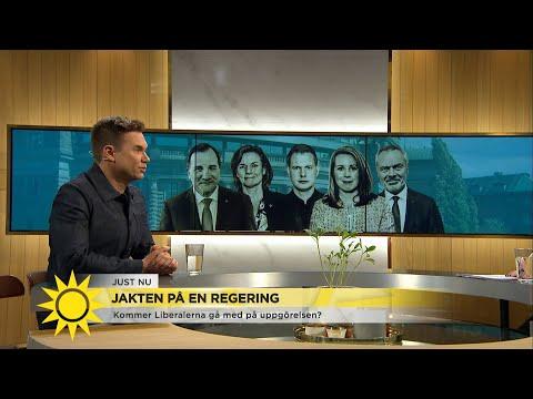 Pihlblad: 'Att krossa Alliansen har alltid varit Löfvens mål' - Nyhetsmorgon (TV4)