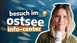 Ausflugtipp für die Familie: Das Ostsee Info-Center in Eckernförde