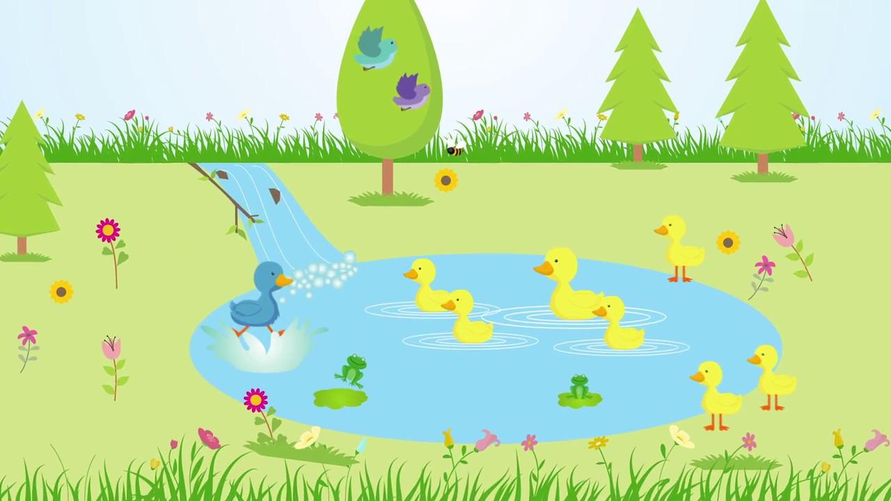 El pato azul en el estanque de patos amarillos youtube for Estanque para patos jardin