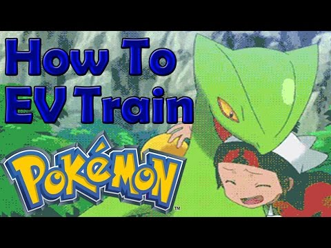 How To EV Train Competitive Pokemon In Omega Ruby & Alpha Sapphire