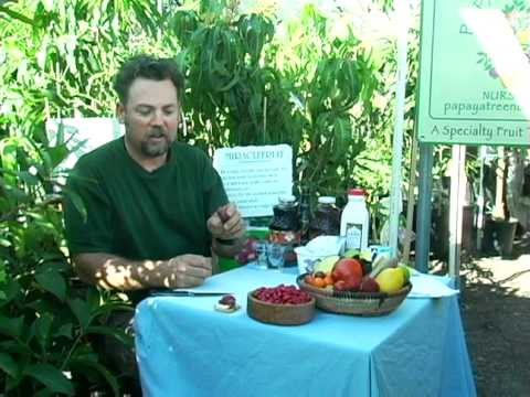 California Organically Grown Miracle Fruit