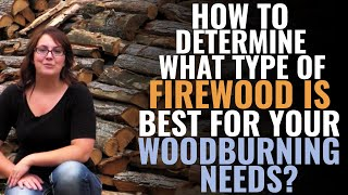 How To Determine What Type Of Firewood Is Best For Your Woodburning Needs?