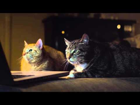 "ADC Kinospot ""Gothic Cat"""