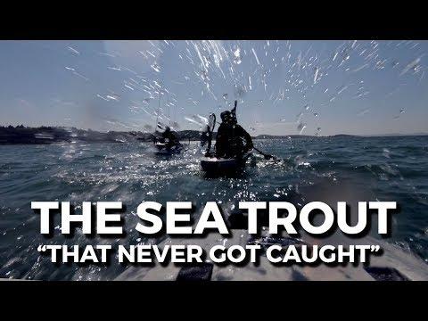 KAYAK FISHING Sea trout (havsöring, meerforelle, havørred) - Gothenburg archipelago