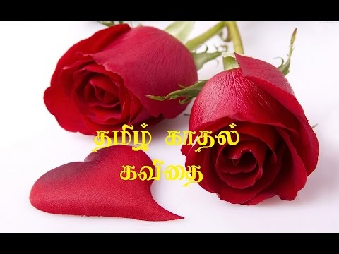 Tamil Love Kavithai I Love You Youtube