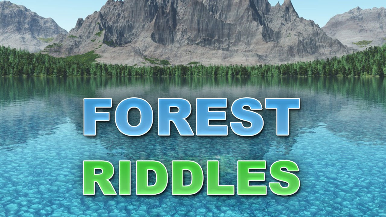 Amazing riddles about the forest 39