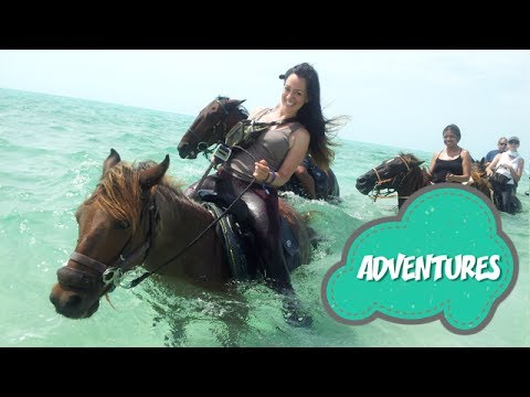 "TRAVEL GUIDE: Swimming Horses ""Turks and Caicos"""