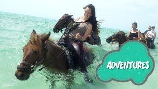 TRAVEL GUIDE: Swimming Horses Turks and Caicos