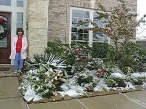 KD va snow  Katy TX.avi