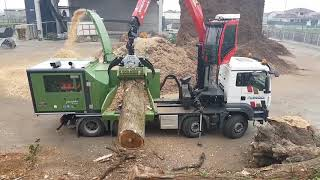 PTH 1000/1000 M Pezzolato drum wood chipper driven by SCANIA DC16 motor, 656 Hp power