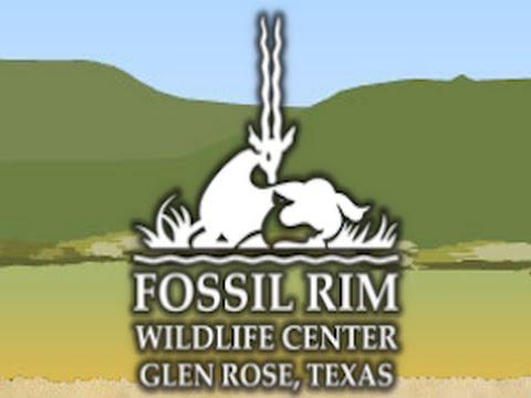Fossil Rim Reserve Glen Rose TX