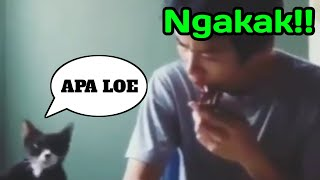 Download Mp3 Ngakak!!lucu Buat Ringtone🤣🤣