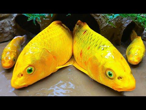 Stop Motion Cooking ASMR -Alligator Hunting Catfish Funny Mukbang Colorful Koi Fish Video Cuckoo