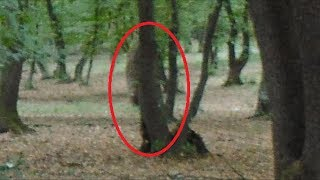 Hoia-baciu | The World's Most Haunted Forest Documentary