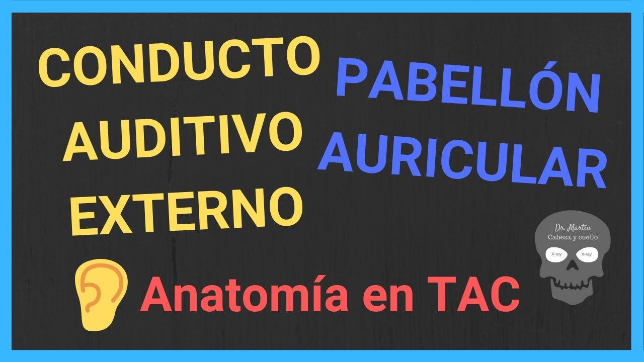 Pabellón auricular y conducto auditivo externo: anatomía radiológica ...