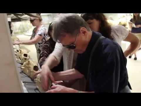 Экскурсия для слепо-глухих посетителей Дарвиновского музея (миниверсия)