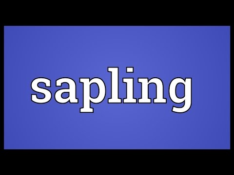 Sapling Meaning