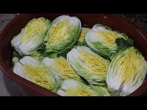 심방골주부 김장하는날 Vlog Part1. 배추 절이기 Korea Traditional Food Kimchi Recipe Vlog