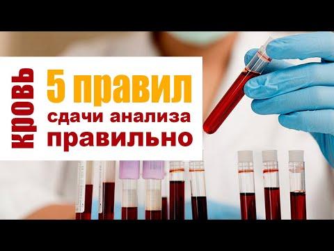 Сдаем биохимический анализ крови без ошибок. 5 правил подготовки