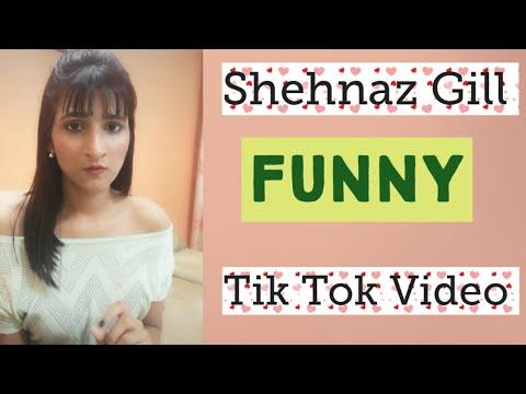 Shehnaazgill funny tiktok video