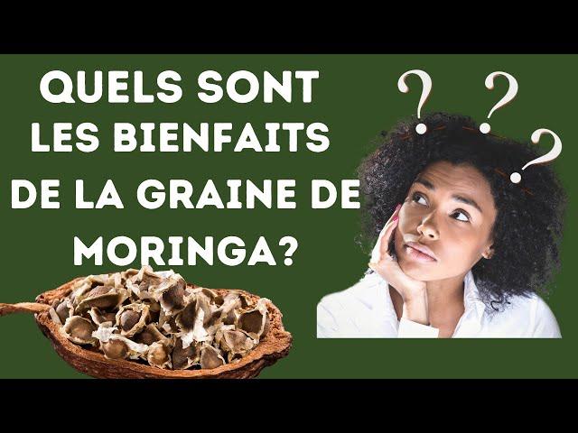 Quels sont les bienfaits de la graine de moringa? #moringa#bienfaits#nebeday#santé#