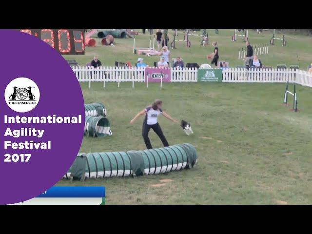 Kennel Club British Open Semi Final Large - Part 1 | International Agility Festival 2017