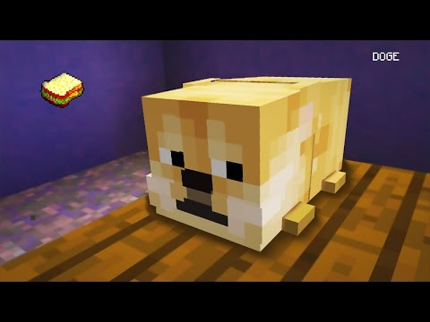 Minecraft | How to make Doge
