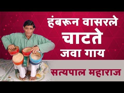 हंबरून वासरले | चाटते गाय | सत्यपाल महाराज किर्तन | Satyapal Maharaj Kirtan