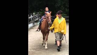 Brayden riding a horse at Turtle Back Zoo