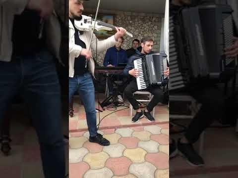 Sergiu Pavlov program