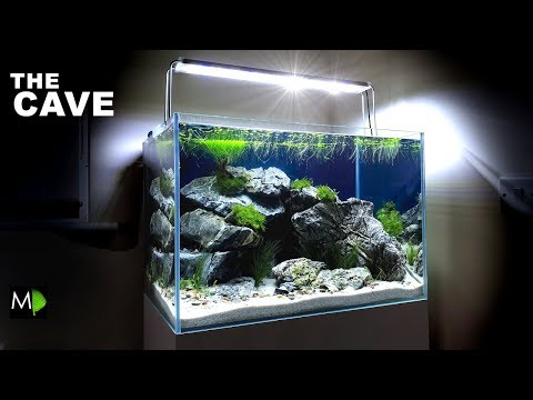 """the-cave""-aquarium......how-to---aquascape-tutorial-/-setup"