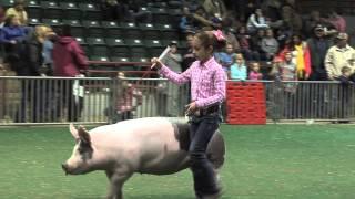 Georgia Junior National Livestock Show Brings Thousands To Perry