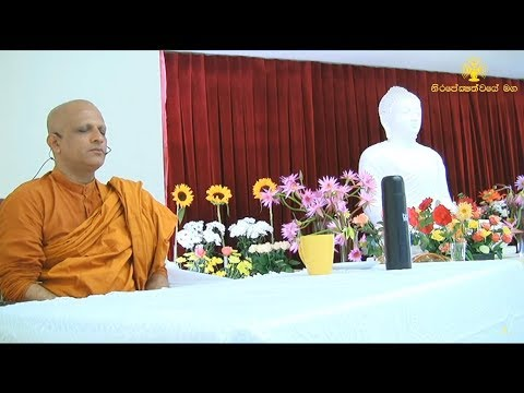 1. Meditation Program - [Auckland, New Zealand]