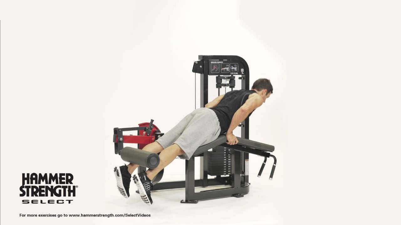 hammer strength select leg curl