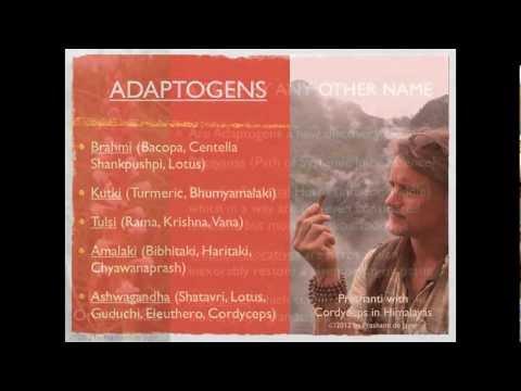 Prashanti Herb Video Journal: Adaptogens Introduction